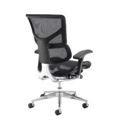 Dynamo Ergo mesh back posture chair with chrome base - black