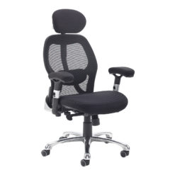 Nobis Office Furniture - Sandro mesh back executive chair with black air mesh seat and head rest