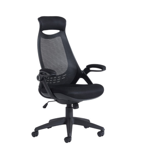 Nobis Office Furniture - Tuscan mesh high back chair with head support - black